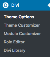 theme_options__worth_it_media_-_wordpress